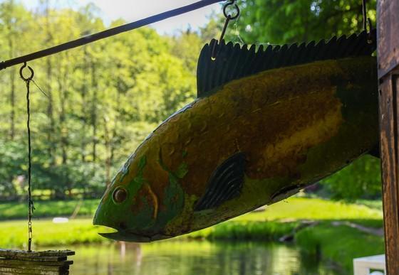 Fisch als Metallschild bei Fischer Mütze