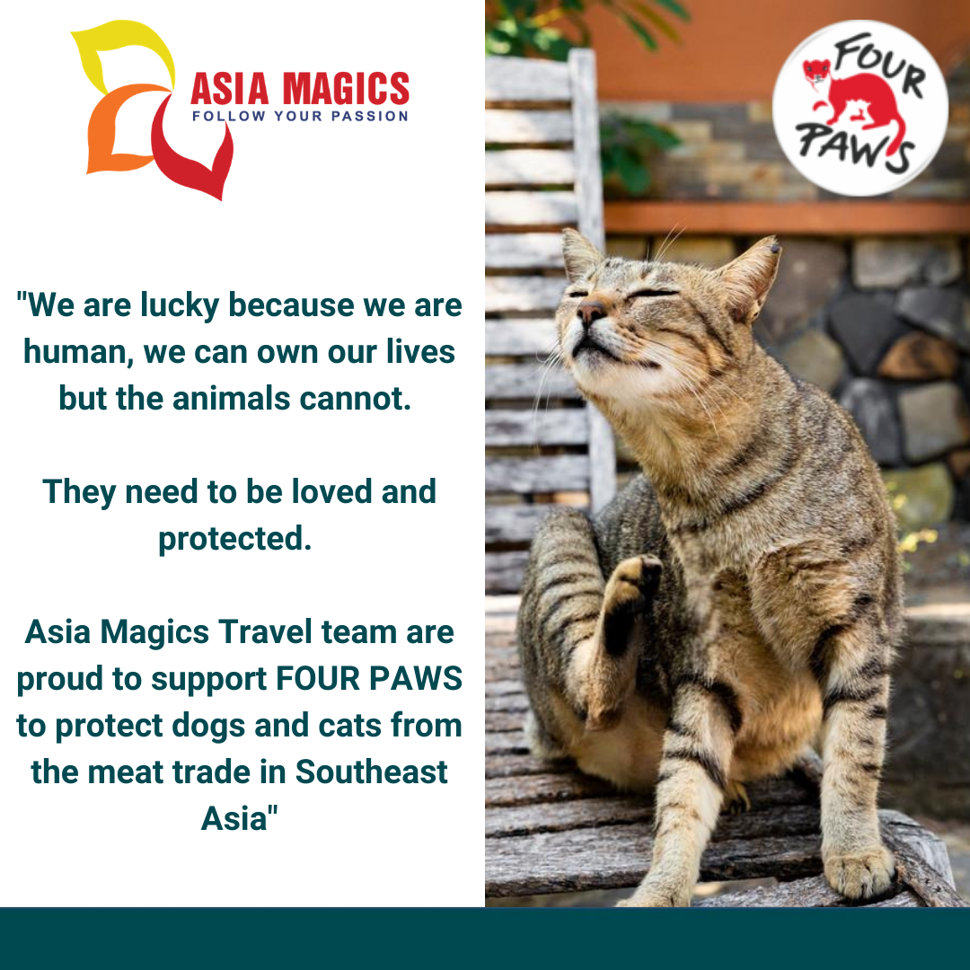 Thanks to Asia Magics