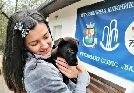 Dog Milki | куче Милки