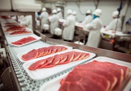 Fleischscheiben auf Tabletts in einer Fabrik