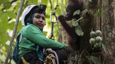 Help us by a forest kit for our caregivers