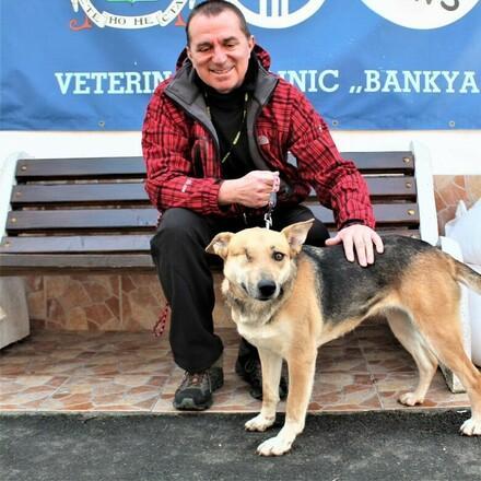 куче Ан-Бони