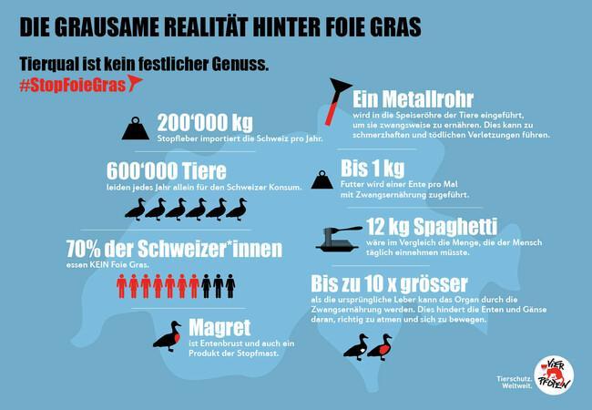 Die grausame Realität hinter Foie Gras.