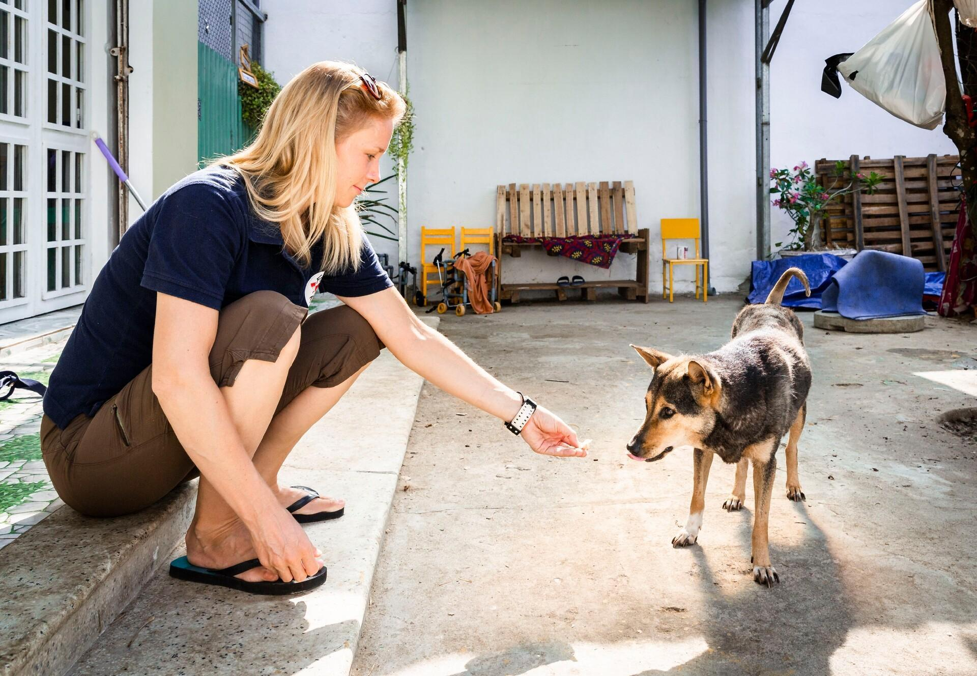 Four Paws Southeast Asia Partnership Program Help For