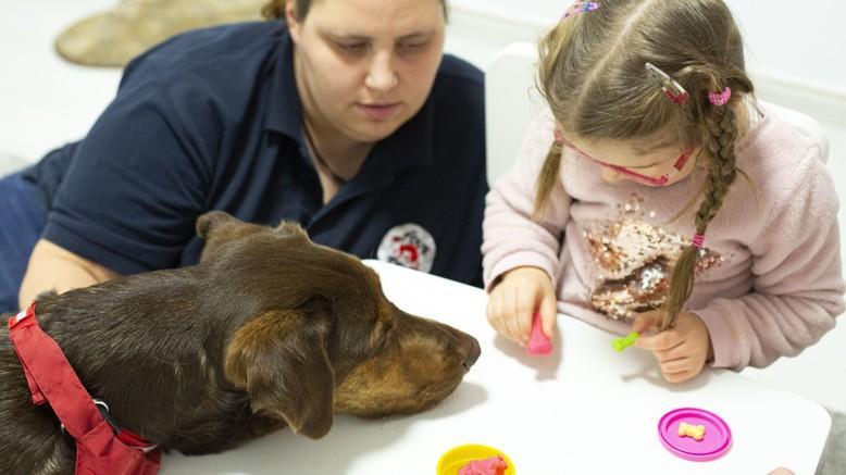 Hund Shoko während einer Thearapiesitzung mit einem jungen Mädchen