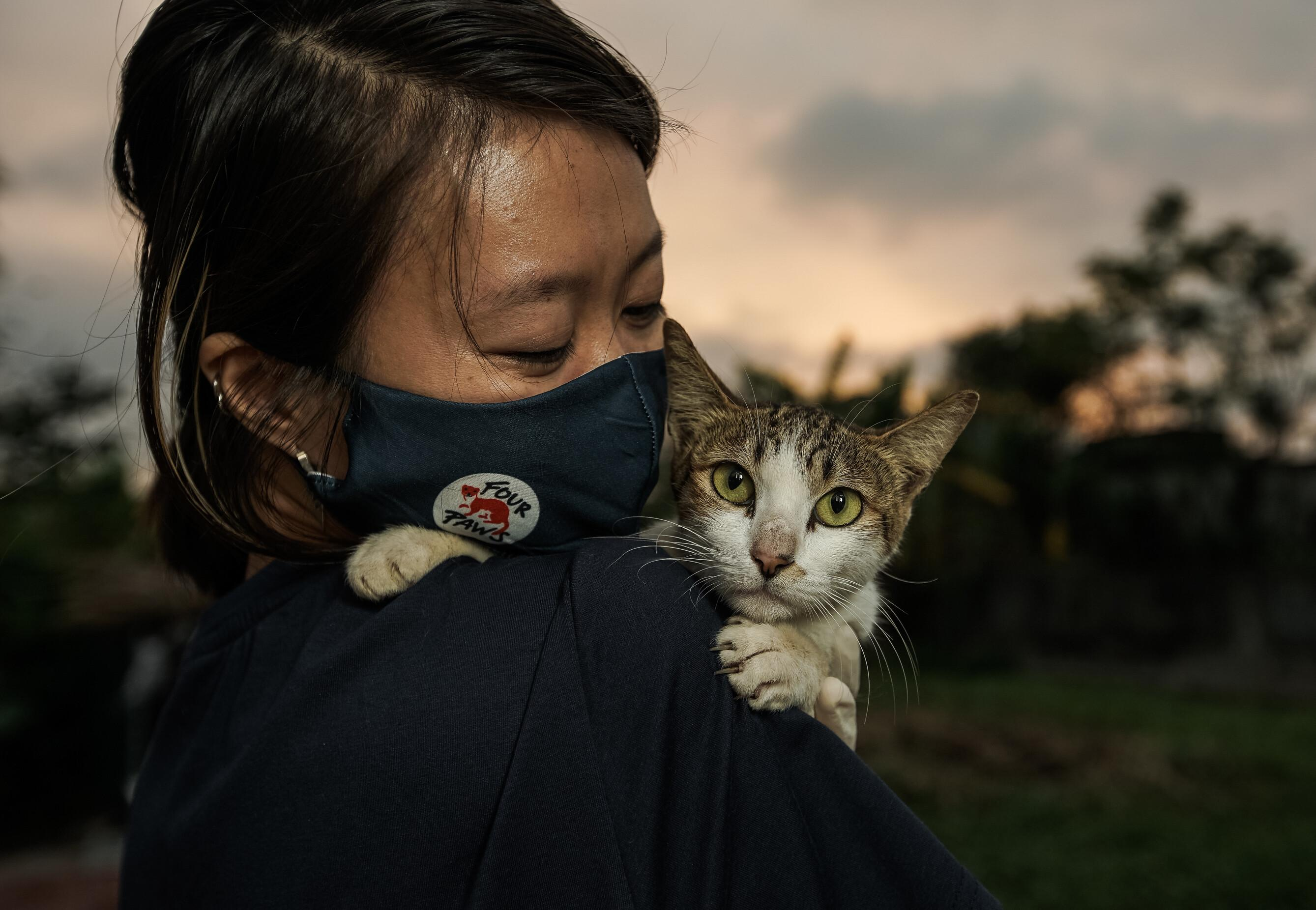 FOUR PAWS team with a rescued cat