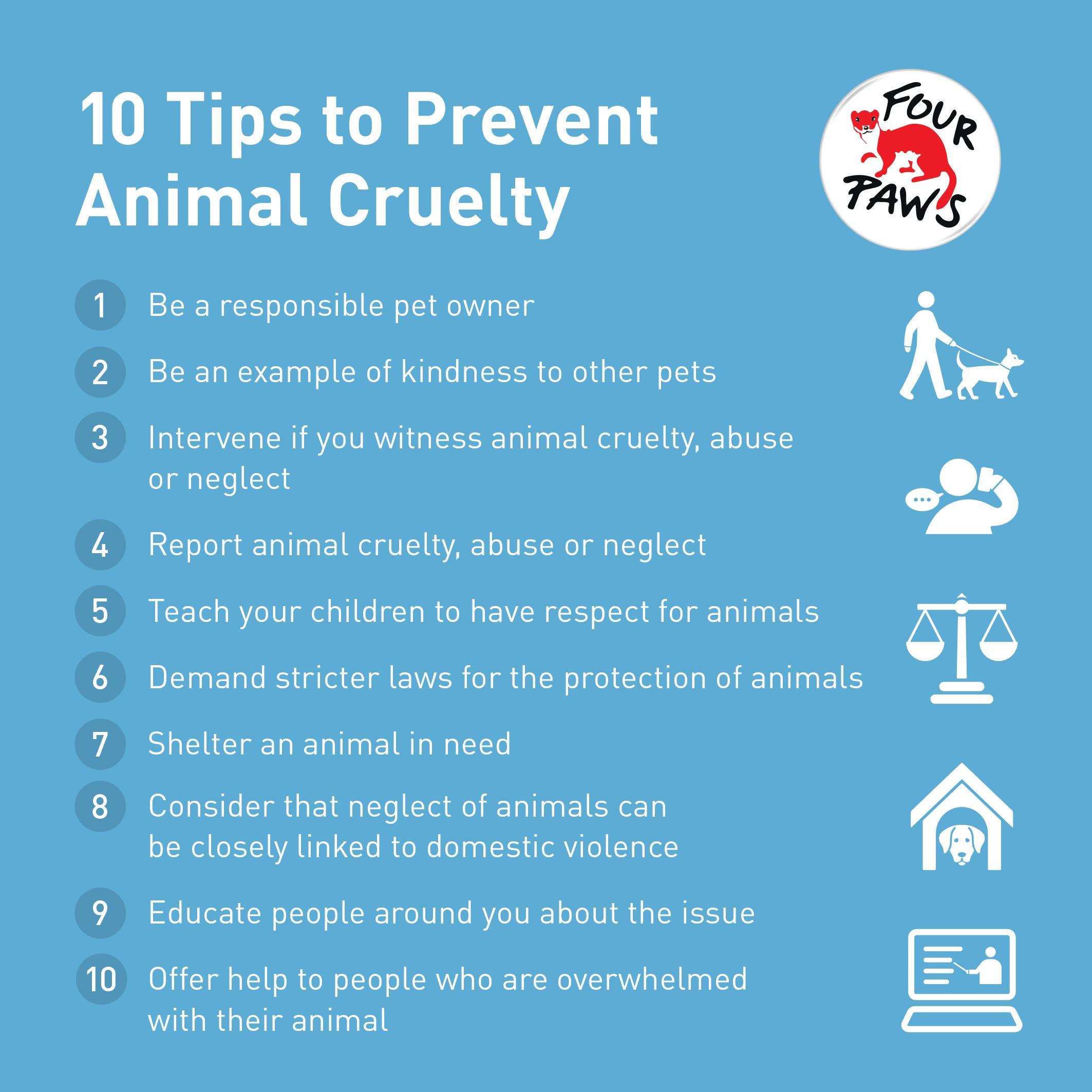 10 tips to prevent animal cruelty