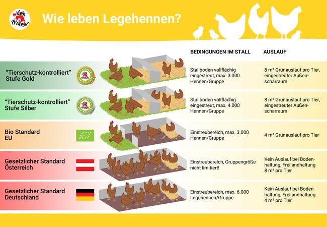 """""""Tierschutz-kontrolliert"""" Wie leben Legehennen"""