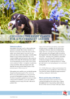 Choosing the right plants for a pet-friendly garden