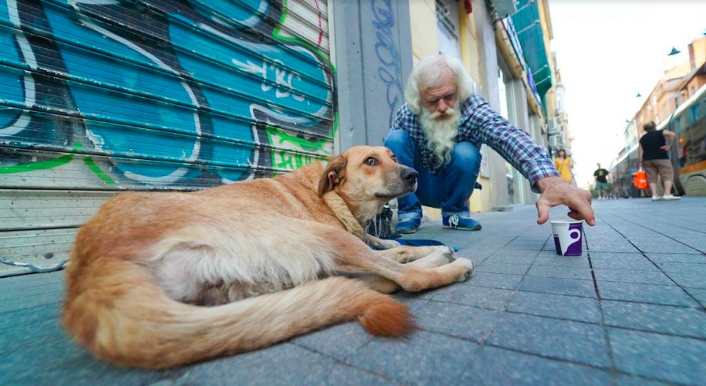 възрастен човек храни улично куче