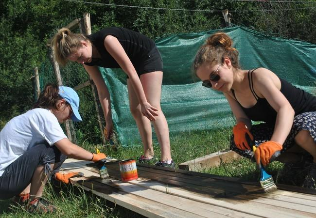 Volunteers Workcamp at Bear Sanctuary Prishtina