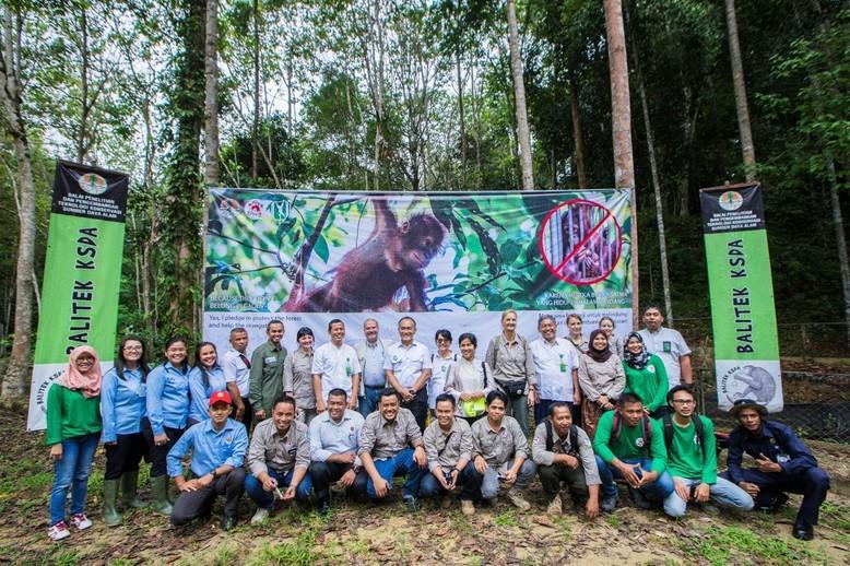 L'ouverture de l'ECOLE DE LA FORÊT pour orangs-outans