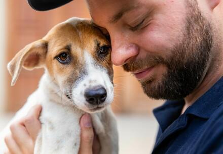 Geredde hond in de armen van een VIER VOETERS-medewerker