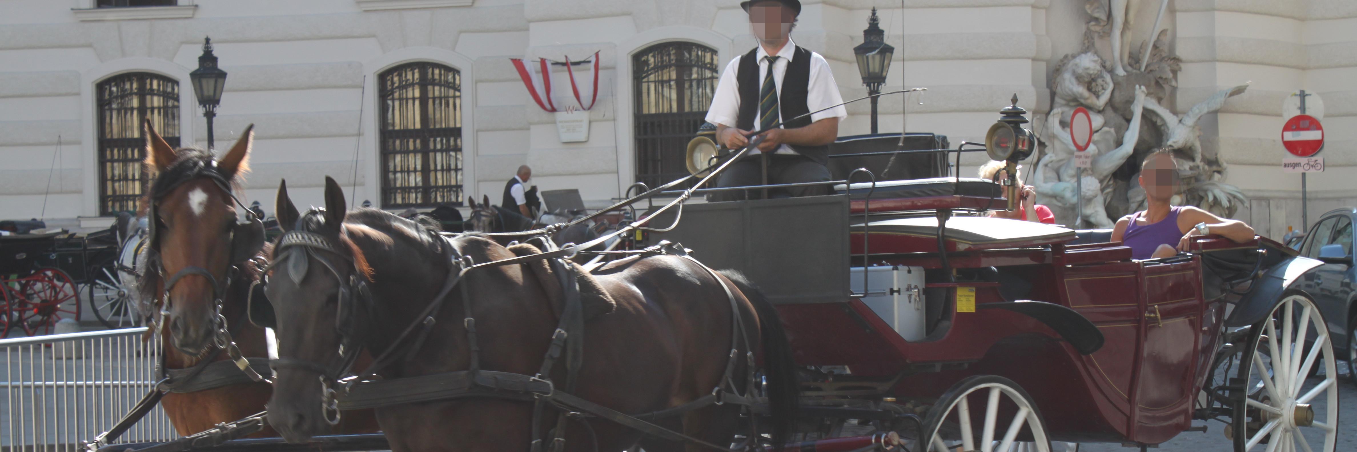 Fiakerkutsche in Wien