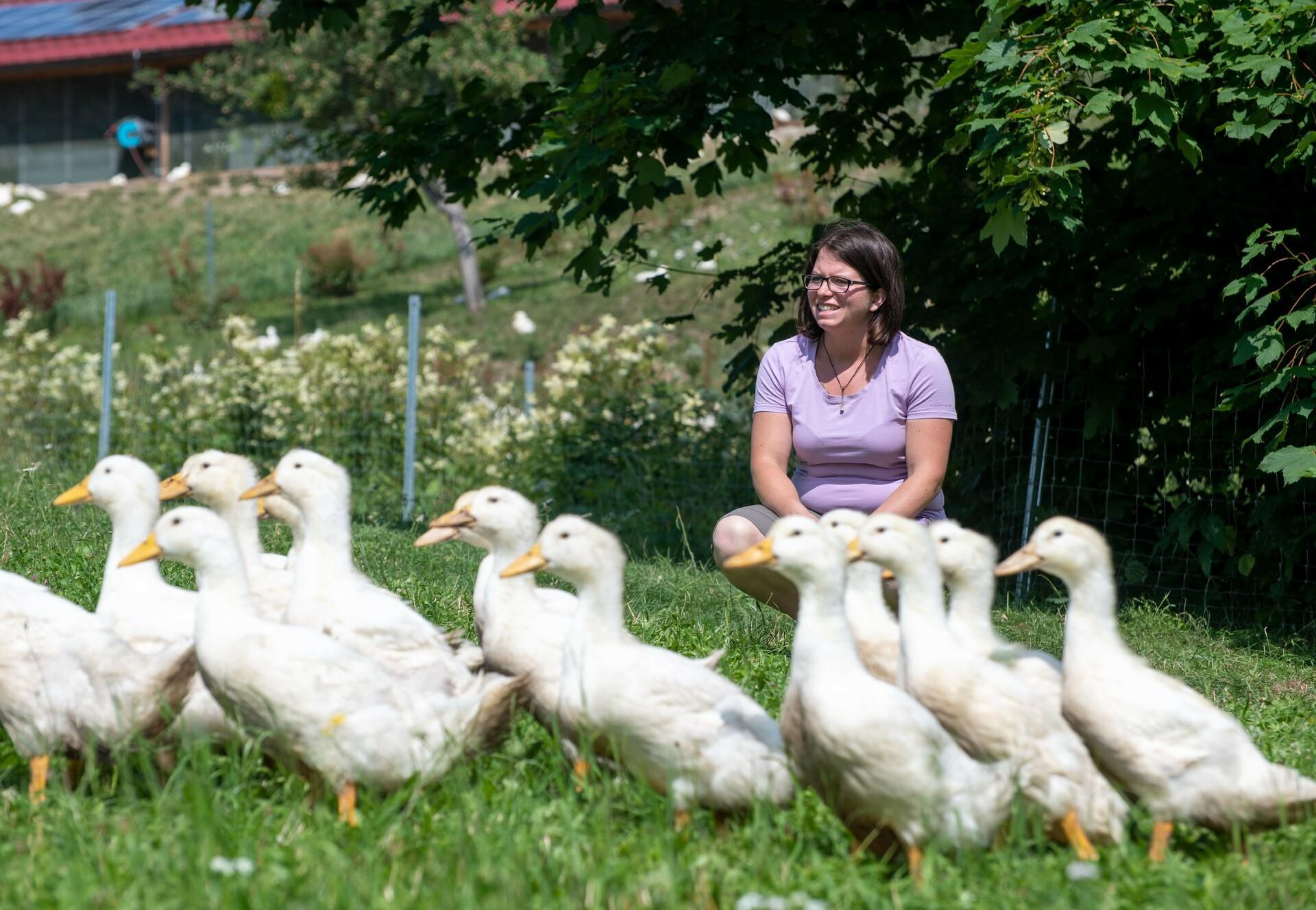 Bäuerin Anja und die Enten