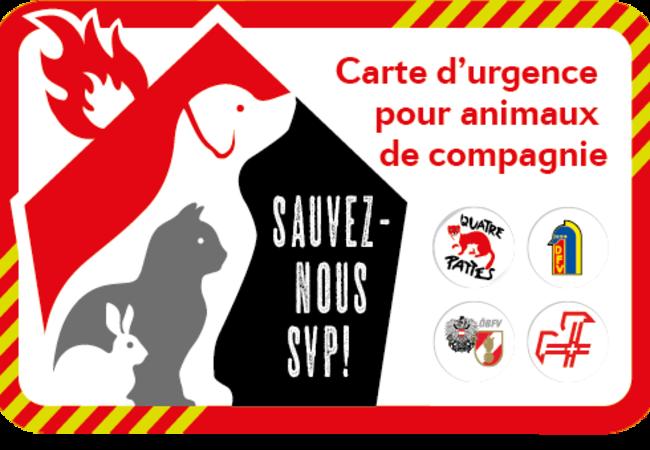 Save my pet - Français