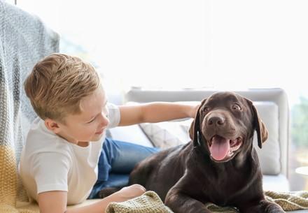 Garçonnet sur le canapé avec un chien
