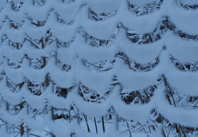 Wildzaun mit Schnee