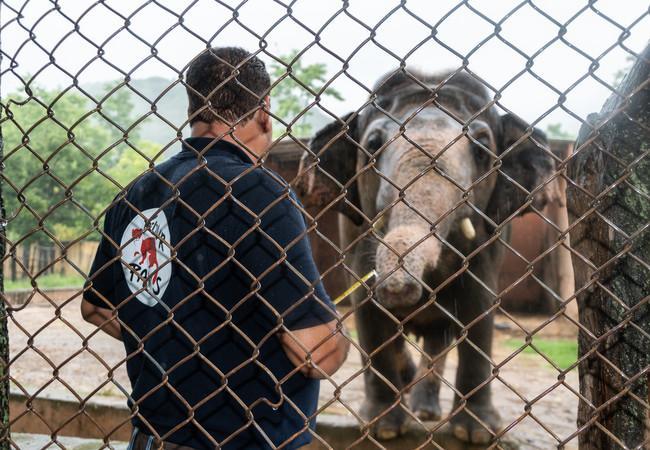 L'équipe QUATRE PATTES visite le zoo de Marghazar