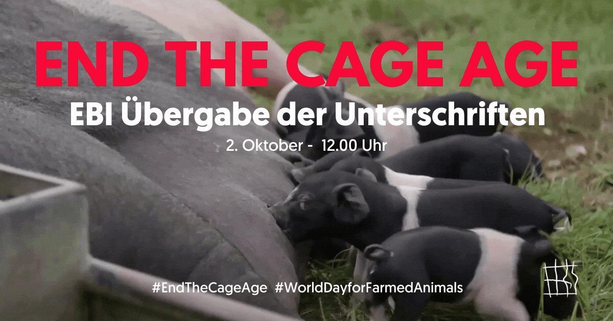 End The Cage Age - EBI Übergabe der Unterschriften am 2. Oktober 2020