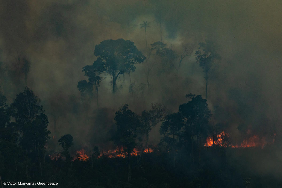 Fires in Candeiras do Jamari, Amazon...