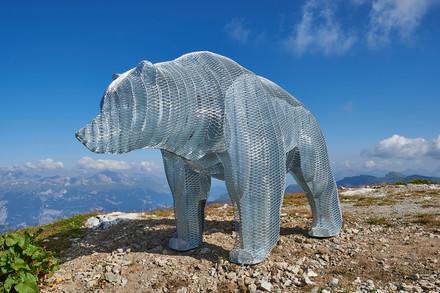 Weisshorn Bär