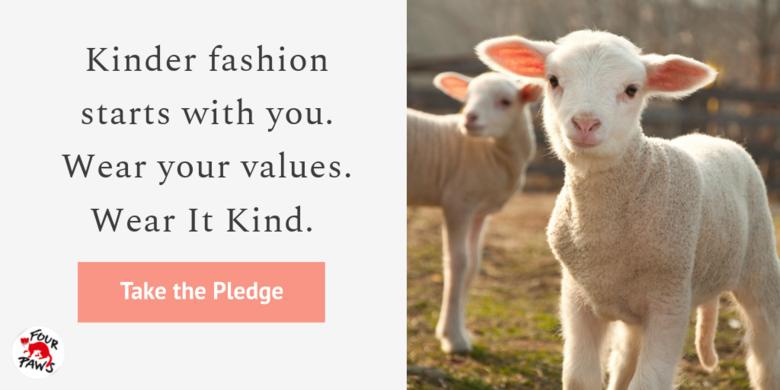 Lamb wear it kind pledge