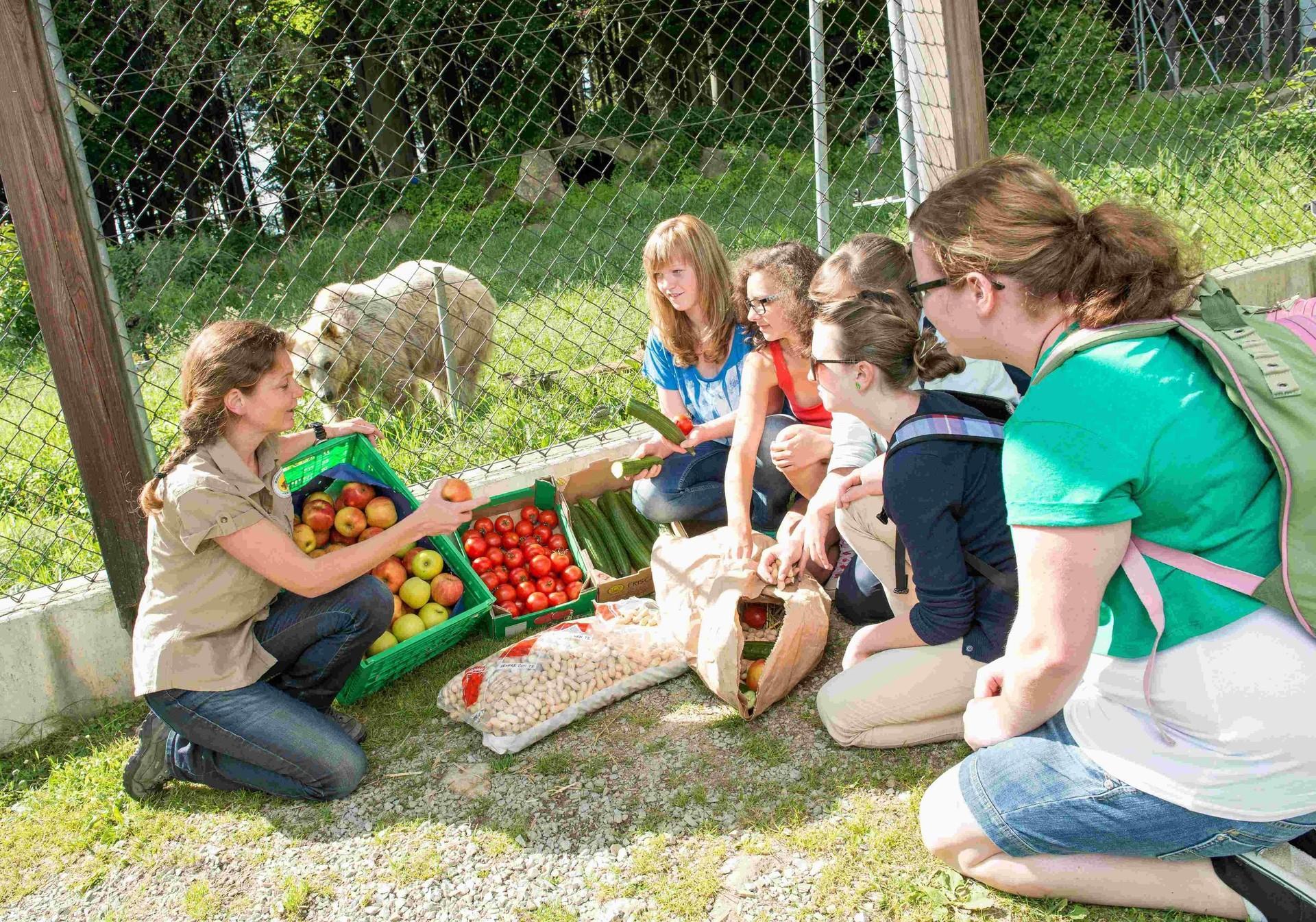 Kinder und Jugendprogramm im BÄRENWALD Arbesbach