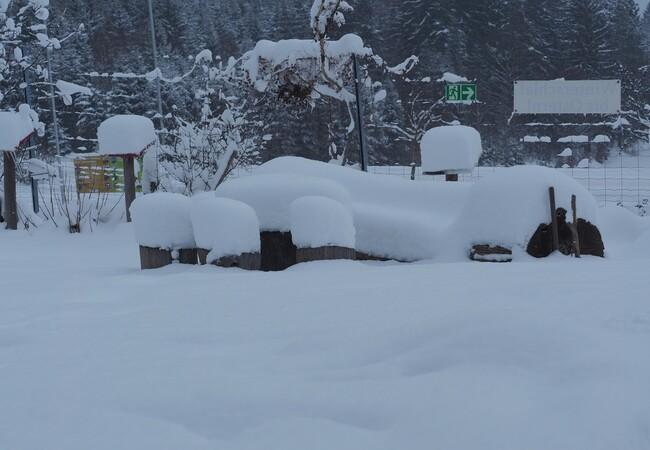 Winterlandschaft mit viel Schnee