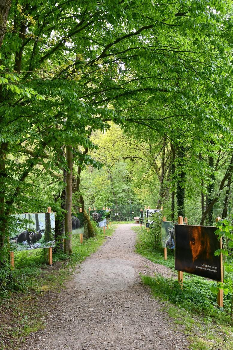 Wanderfotoausstellung im BÄRENWALD Müritz