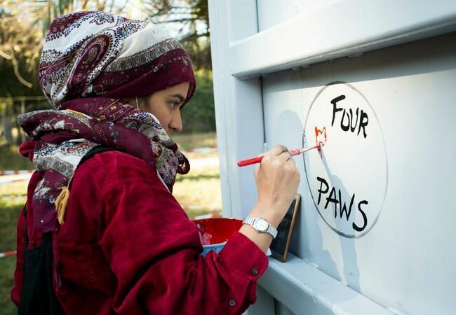 Shimza Kamal, Künstlerin, die auf die Transportkiste des Elefanten Kaavan zeichnet