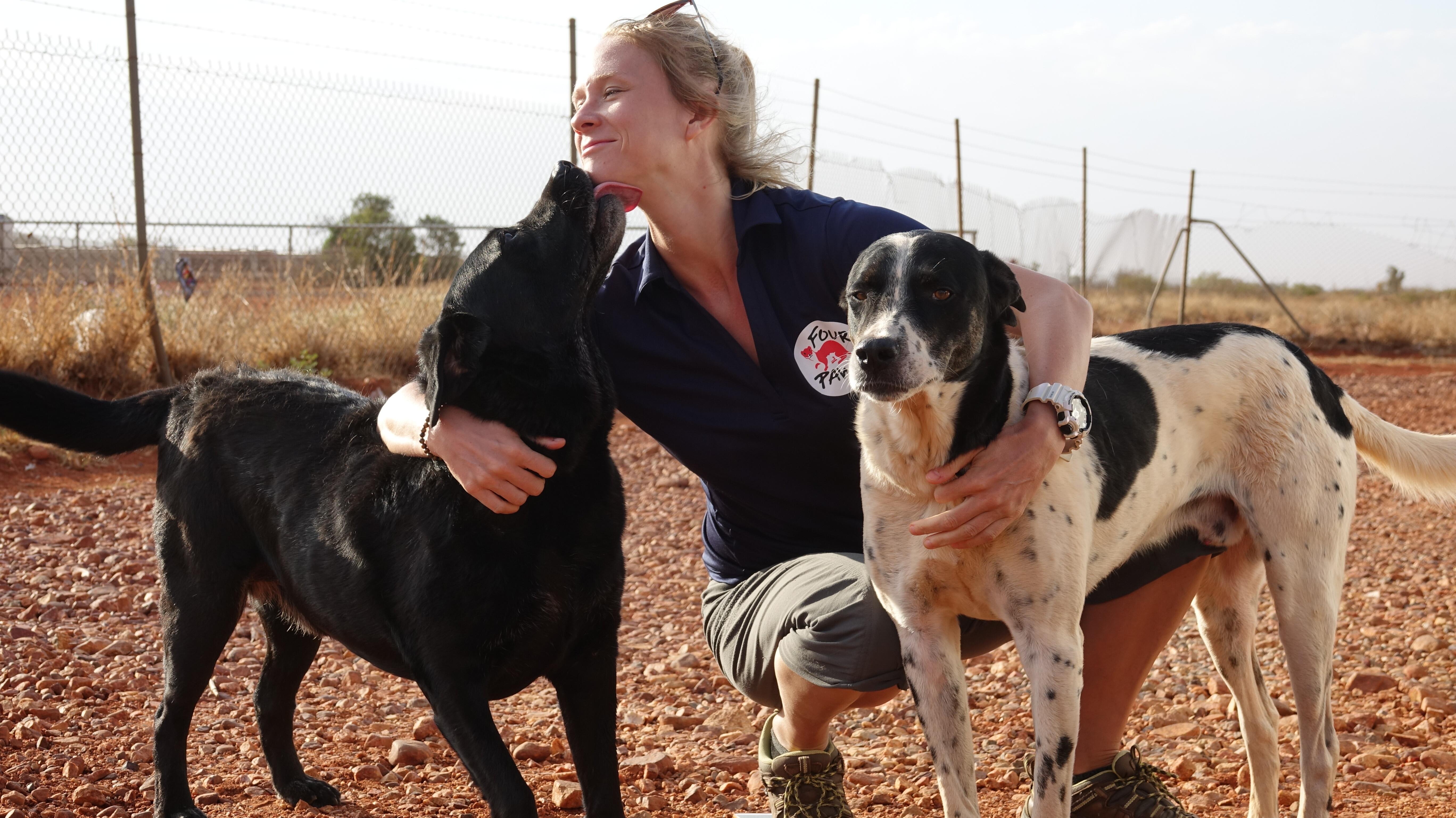 ЧЕТИРИ ЛАПИ служител с две кучета