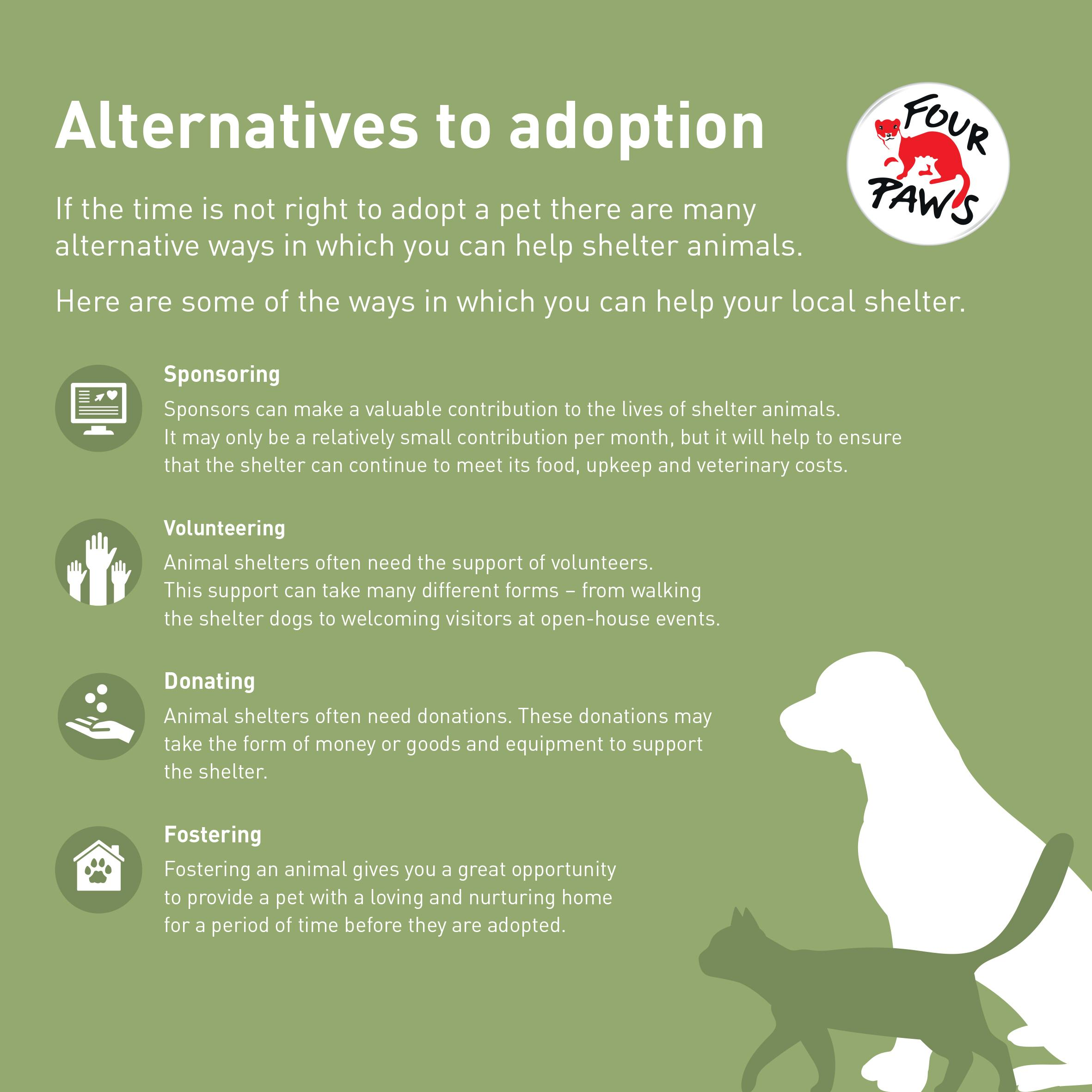 Alternatives to Adoption