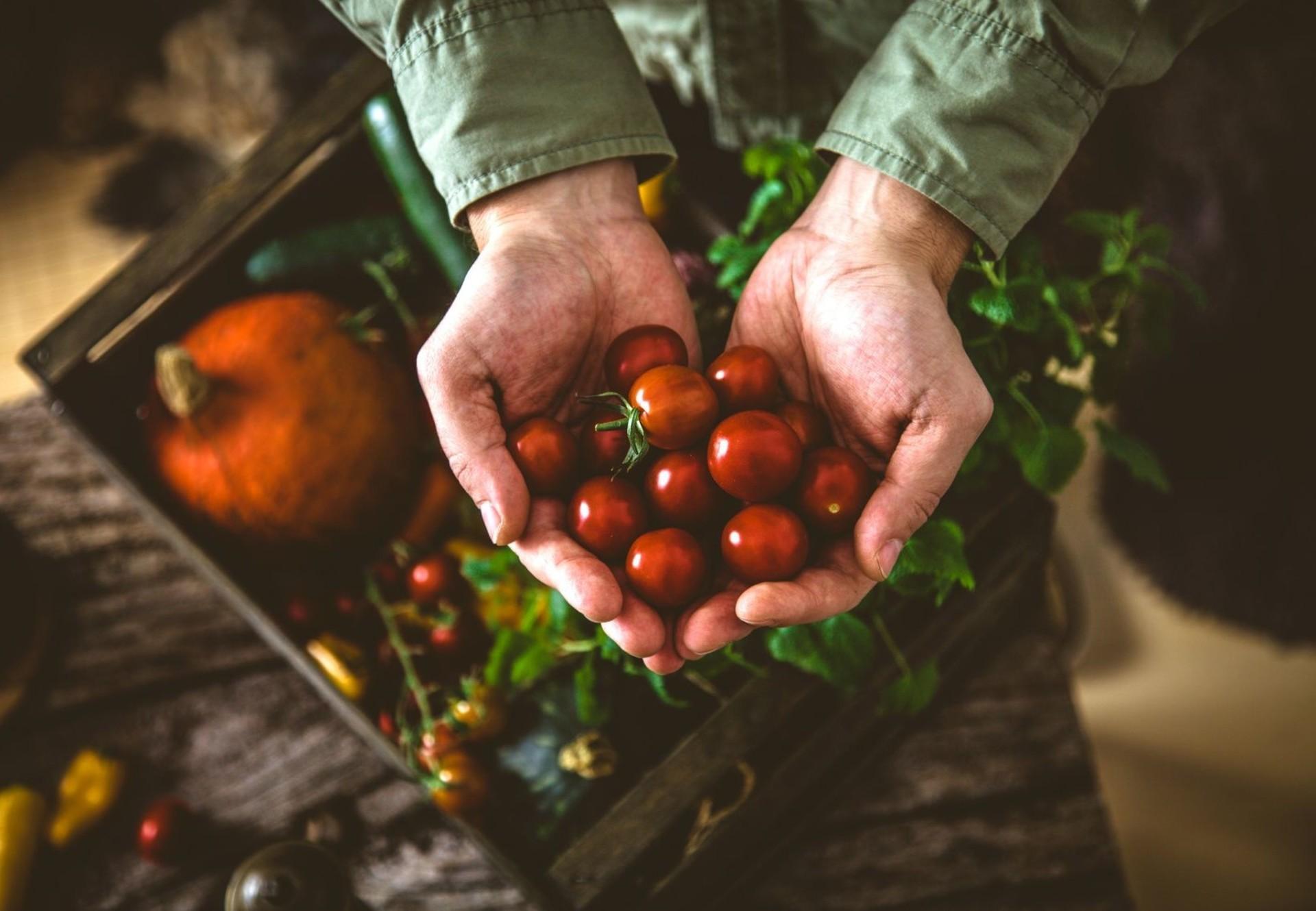 Gemüse (c) Fotolia | Mythja
