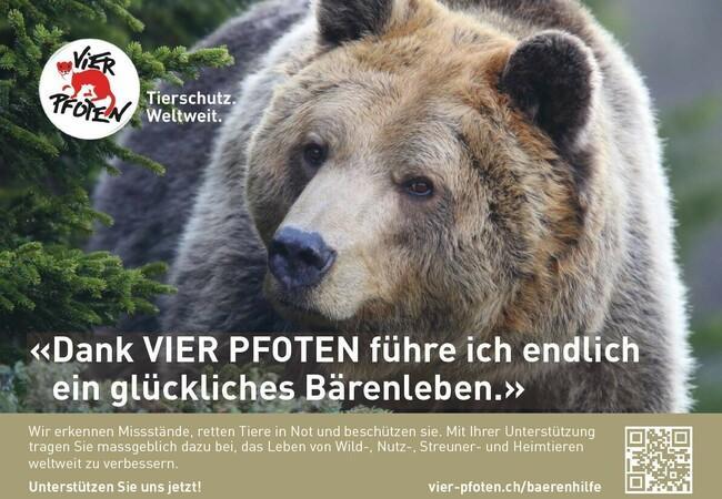 Füllerinserat Bärenhilfe