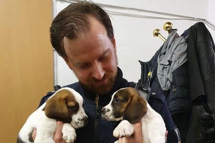 Ein Polizist hält zwei junge Welpen im Arm