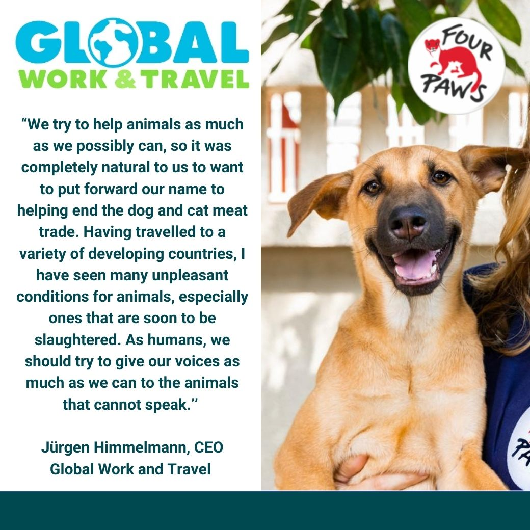 Danke an Global Work and Travel