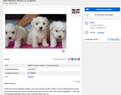 So wurde Welpe Krümel auf eBay Kleinanzeigen inseriert. Dass der Welpe schon vor dem Kauf schwer krank war, war für die Käuferin nicht zu sehen. (Quelle: Screenshot von eBay Kleinanzeigen)