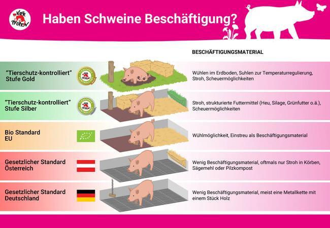 """""""Tierschutz-kontrolliert"""" Beschäftigungsmaterial für Schweine"""