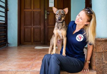 Rettung von Hunden und Katzen
