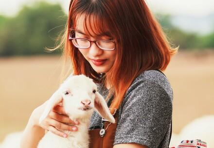 Girl holding a lamb