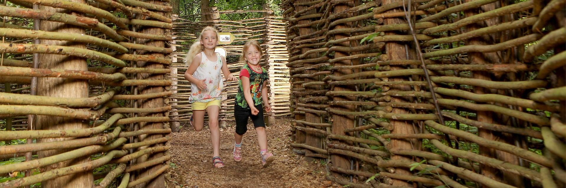 Kinder im Waldlabyrinth