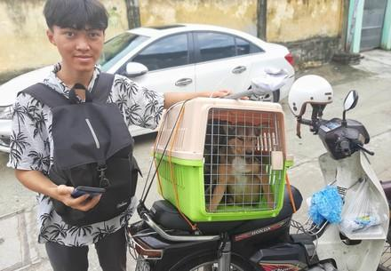 Local activist, taking the dogs to safety on the back of his motorbike