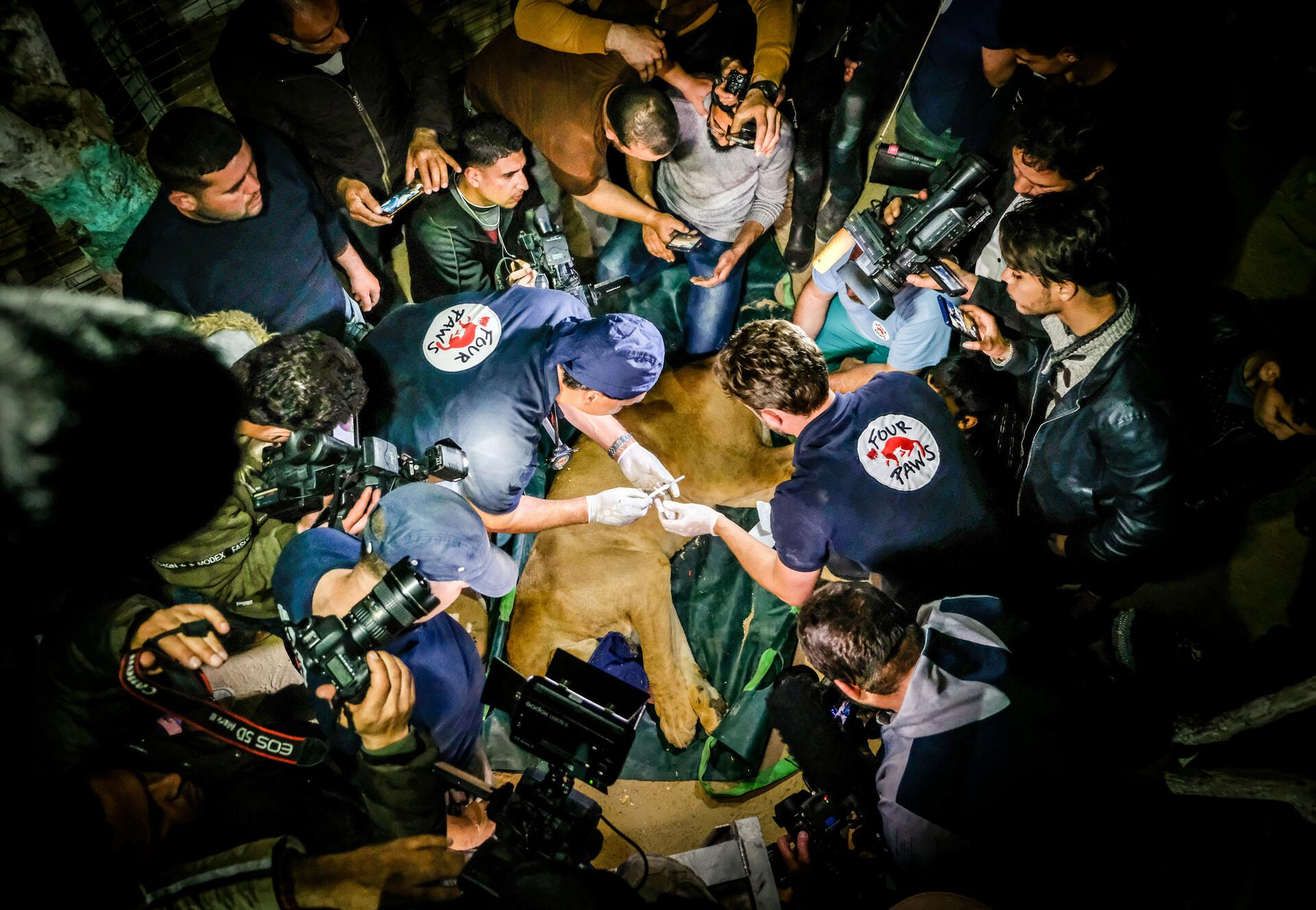 Reddingsmissie Gaza 2019