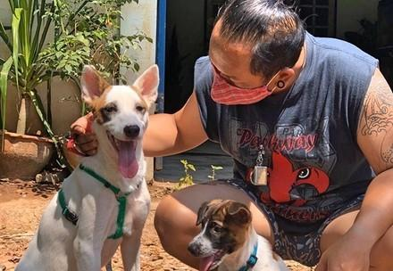 Animal Welfare and COVID-19
