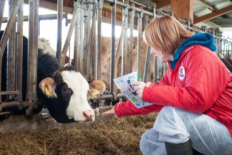 Tierbezogene Parameter werden genau erhoben