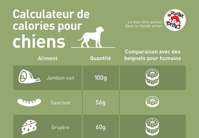 Calculateur de calories pour chiens