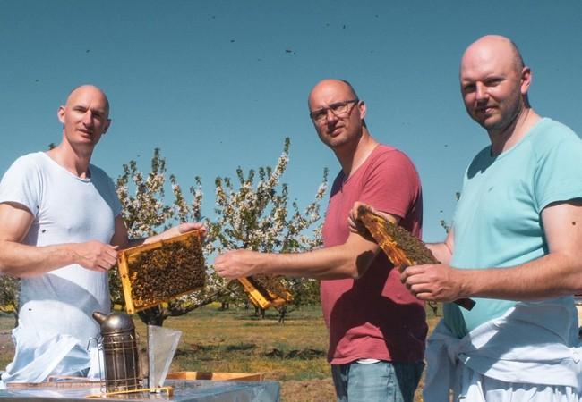 Gebrüder Ueberschär bei Honigernte