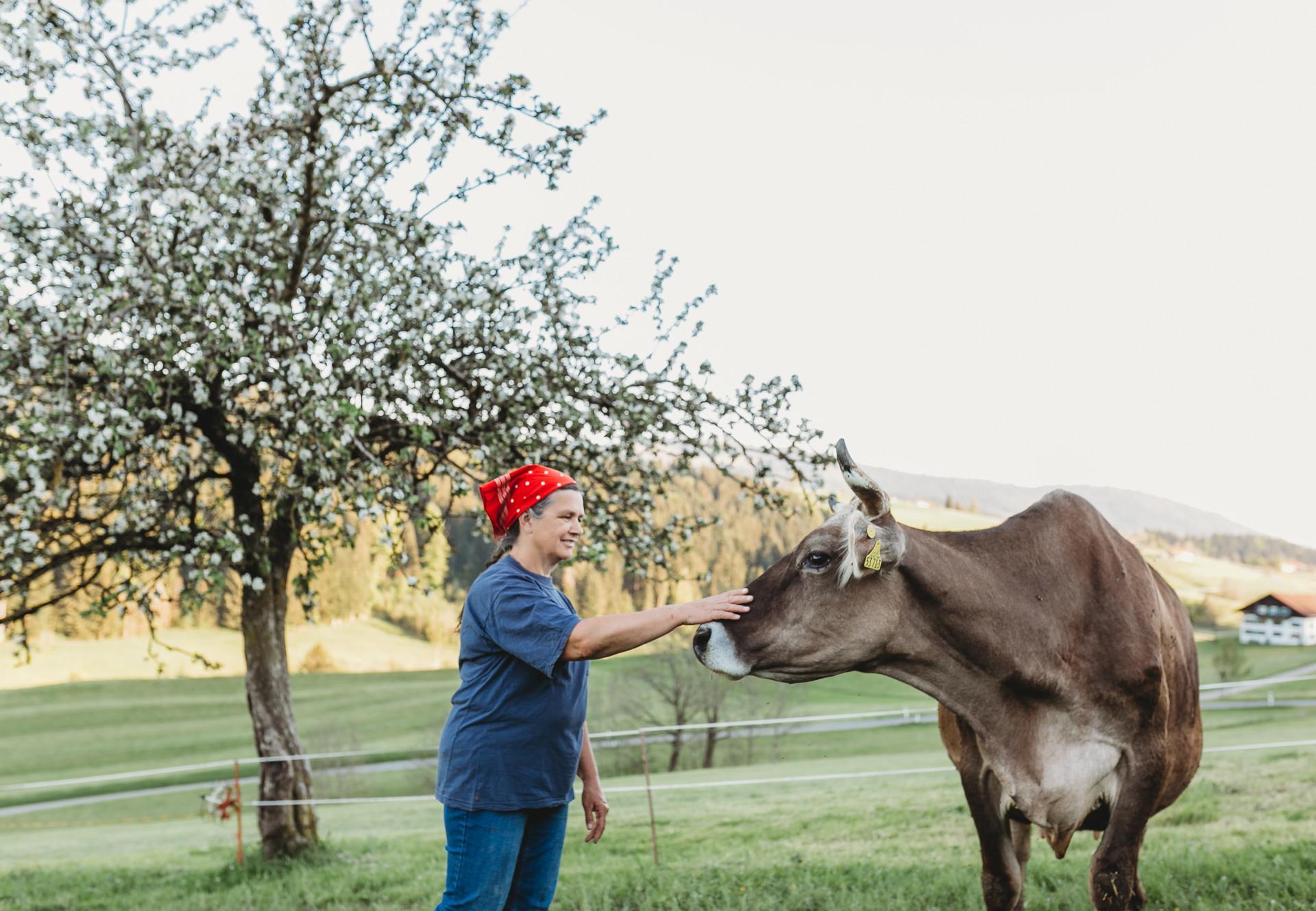 Eine Bäuerin strecihelt eine Kuh