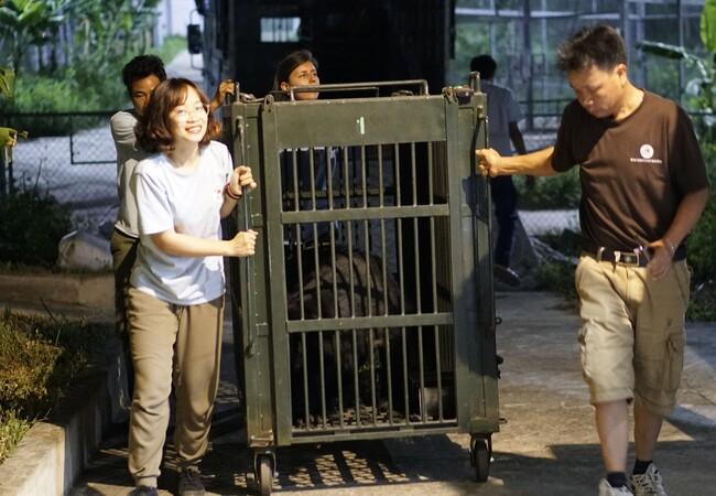 Le sauvetage de Chuoi, Tao and Le